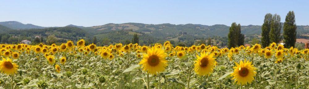 Wonen in Caldese (Italië)
